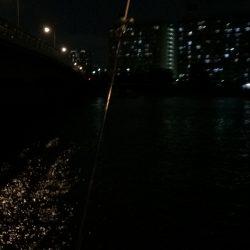 ウナギ釣りパート5