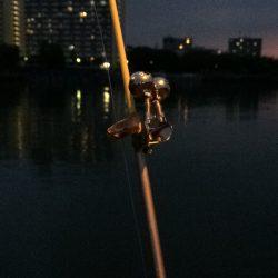 ウナギ釣りパート7