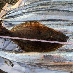 タチウオ夜釣り釣行
