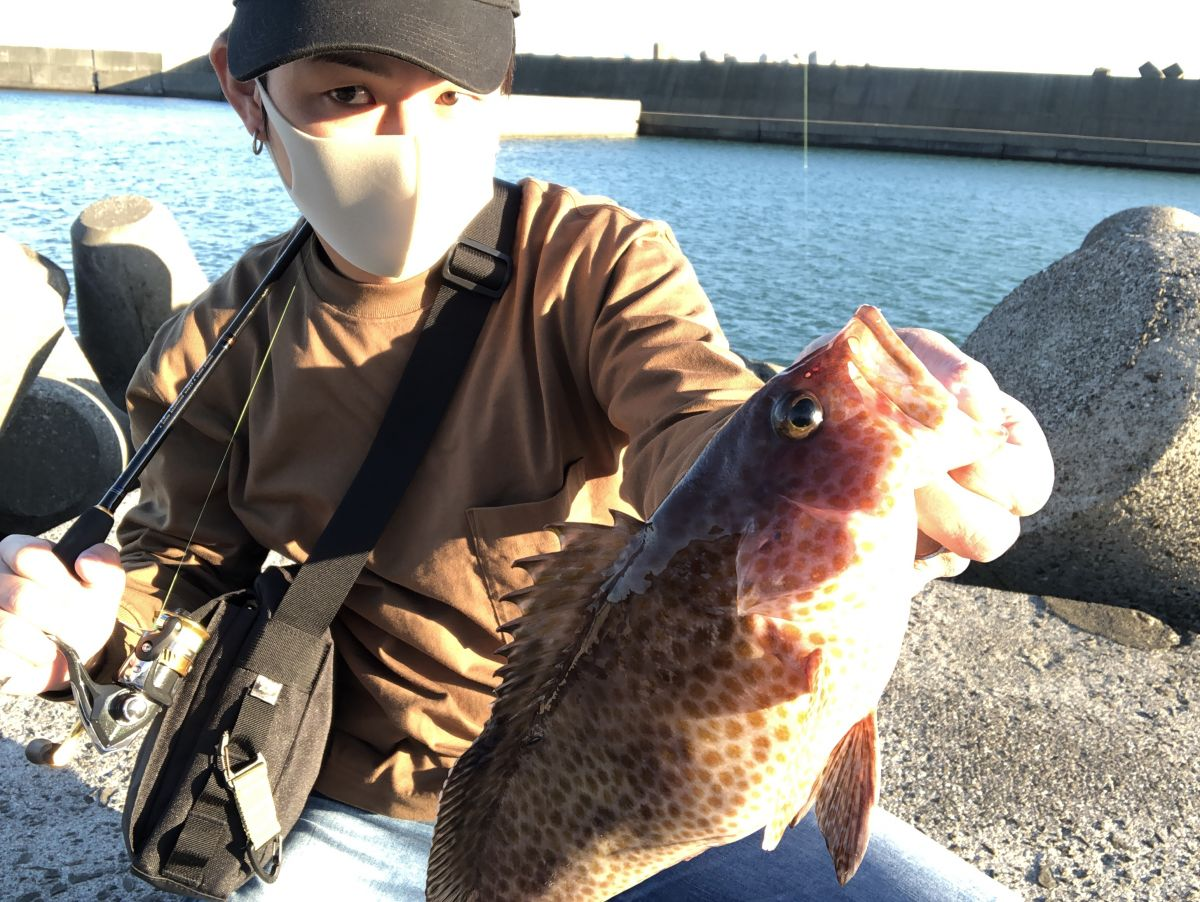 魚種限定解除ライトゲーム【がまかつ LUXXE宵姫 インプレッション】
