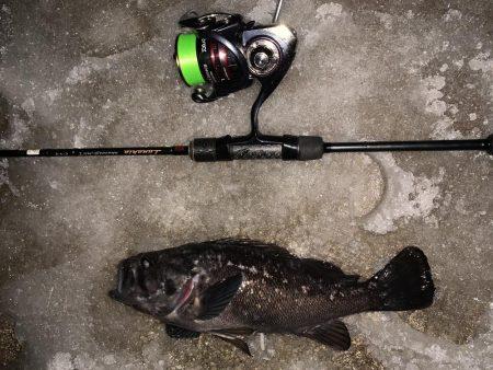 久々の釣りは、、、