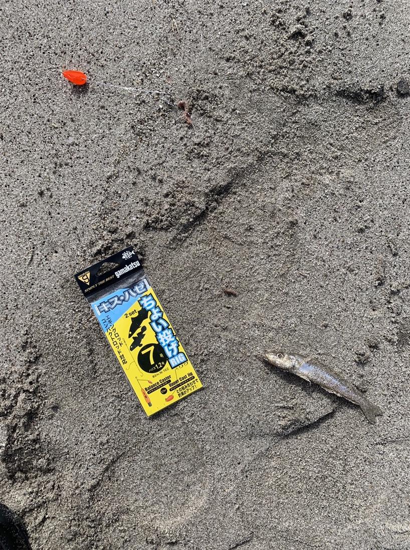 堤防・砂浜からのお手軽ちょい投げレポート【がまかつちょい投げ インプレッション】