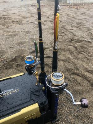 海サクラマスx2 ジグミノー ワイルドボーイ28g