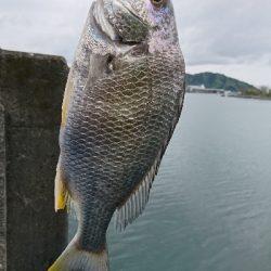 初めての釣り場に。