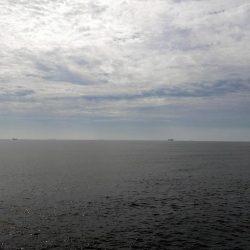 今日も漁船パターンw