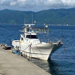 日本海イカメタル好調