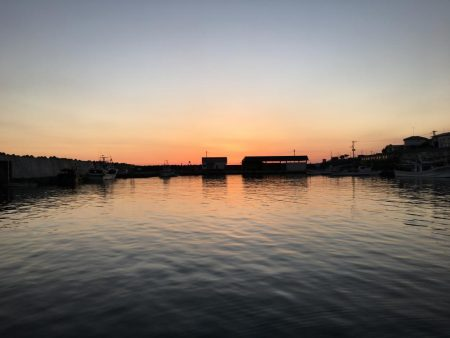 ホーム漁港の朝マズメ