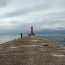 強風の播磨新島釣行