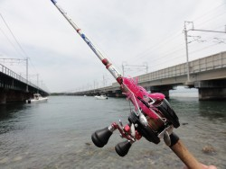 浜名湖オクトパッシング