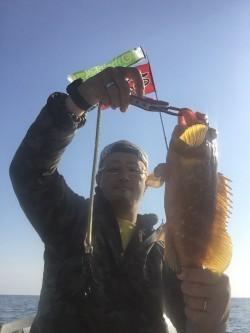 青物と根魚