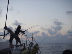 ALCATRAZ 釣果