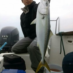 田曽沖40~80m釣果報告(マイボート釣行)