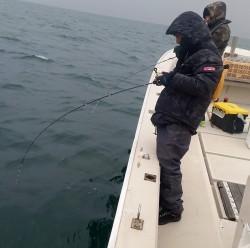 SEA STONE 釣果