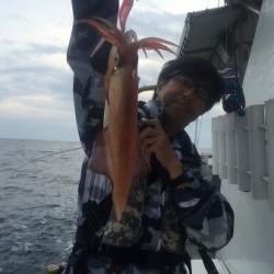 ワープゾーン 釣果